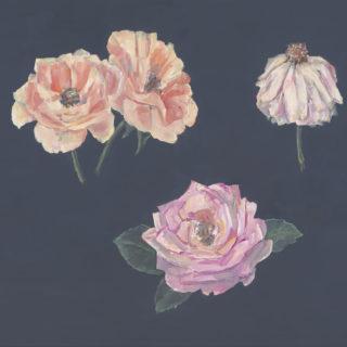 Roses III 2021