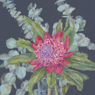 Waratah with Gum Leaves 2020