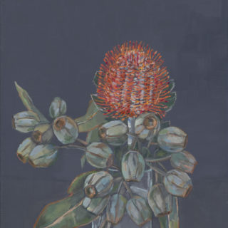 Red Banksia with Gum Nuts 2020