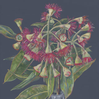 Flowering Gum II 2021
